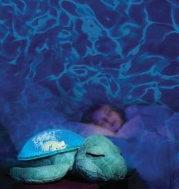 Tartaruga marina - Tranquil Turtle Cluod B