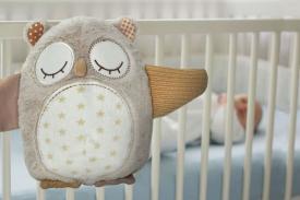 Gufo sonoro con sensore - Nighty Night Owl